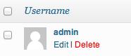 delete WP admin