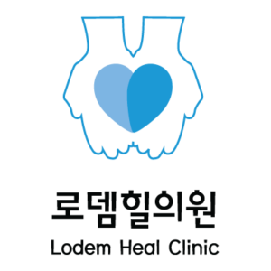 lodem-client-logo